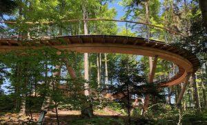 Baumwipfelpfad – stezka korunami stromů za 3,8 miliónů franků