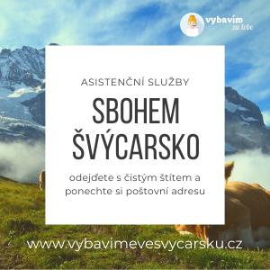 sbohem svycarsko asistenční služby
